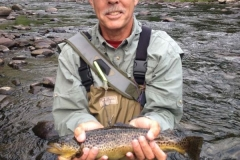 Ron's Nice Ausable brown 2