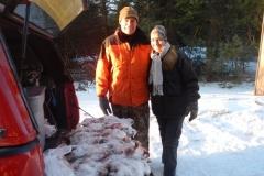 Adirondack snowshoe hare 3