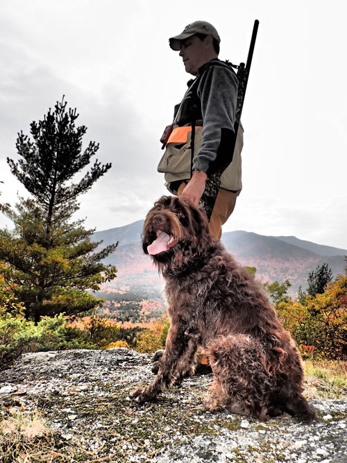 Guided Adirondack Grouse and Woodcock Hunts New York
